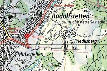 Immobilie Kaufen Rudolfstetten